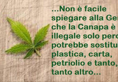 Non è facile spiegare alla Gente che la Canapa è illegale solo perchè potrebbe sostituire plastica, carta, petrolio e tanto altro, toccando così gli interessi di lobby e multinazionali…
